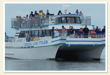 Smith Island Cruises ferry boat